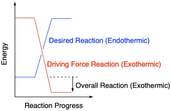 Reactivity thermodynamics in general a reaction will occur if more than enough energy is supplied excess energy does not hurt on the macroscopic scale pooptronica Images