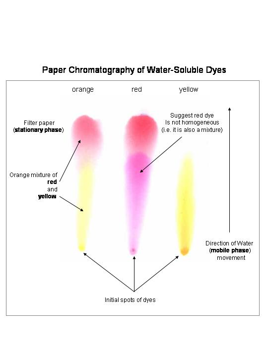 paper chromatography chemistry Chromatography paper is a fine grade of paper made from cotton cellulose the paper is available in three forms: roll, sheet and strips each package includes 100 sheets.