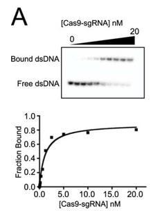 CRISPR_FIG5A