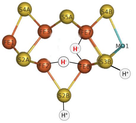 E4hydrides