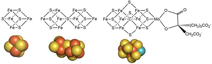 metalclustersNitrogenase