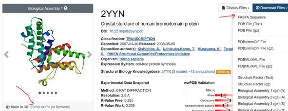 ExampleProtein_2YNN