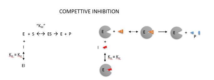 comp_inhib_diagram